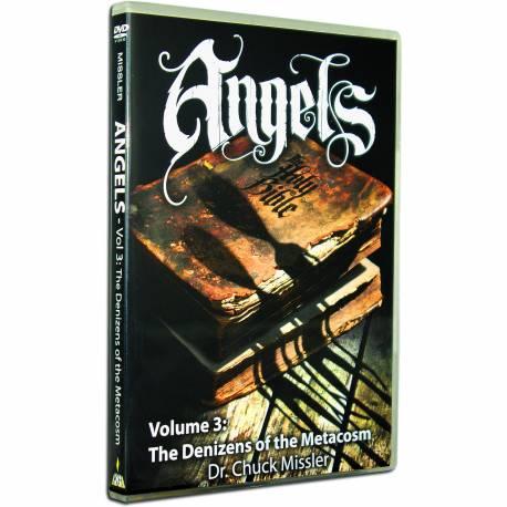 Angels Vol 3: The Denizens of the Metacosm (Chuck Missler) DVD