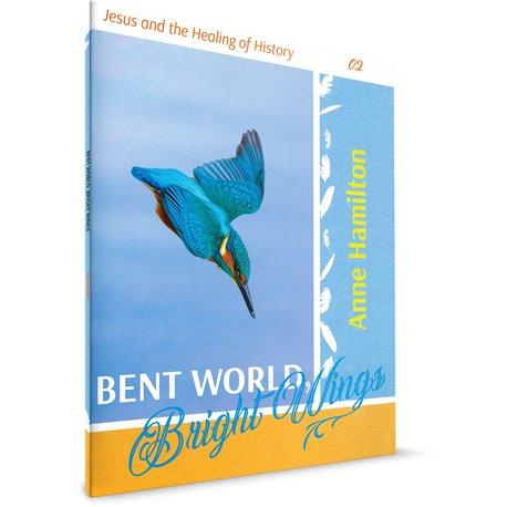 Bent World: Bright Wings (Anne Hamilton)