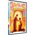 Jesus Heals the Blind (Superbook) DVD